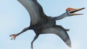 Nombres de dinosaurios voladores y sus características