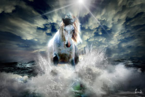 caballo-a-la-velocidad-de-la-luz